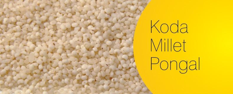 Kodo Millet – Pongal