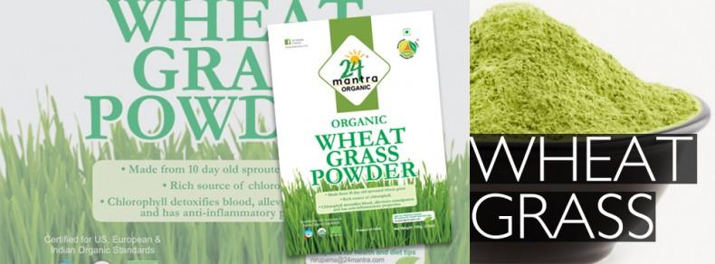 wheat-grass-powder