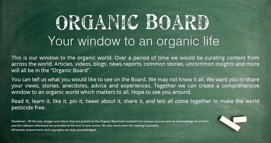 organic-bord-1140-x-600