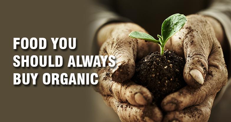 buy-organic-ob-inner