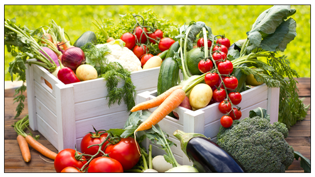 5 Things You Can Grow in Your Backyard This Monsoon