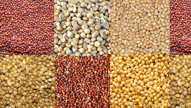 6 REASONS TO EAT MILLETS EVERYDAY