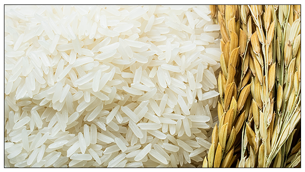#MakeTheSwitch : REASONS WHY RED RICE IS BETTER FOR YOUR HEALTH