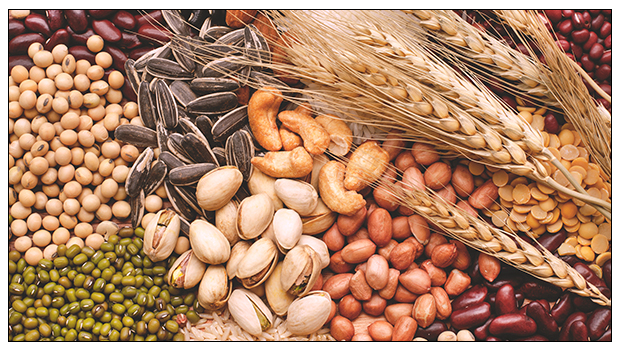5 HEALTHY CARBOHYDRATES YOU MUST INCLUDE IN YOUR DIABETES DIET