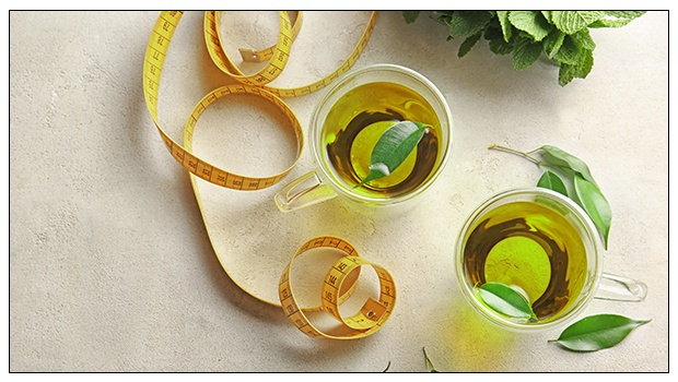 HOW CAN GREEN TEA EXTRACT HELP YOU LOSE WEIGHT?
