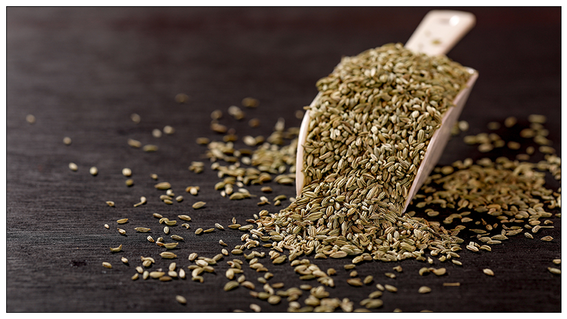Nature's-Gift-–-Fennel-Seeds