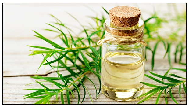 Tea Tree Oil for Skin: 7 Popular Uses and Benefits