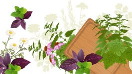 Basil Nutrition facts and health benefits