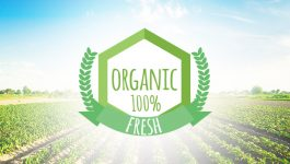 Five Steps to Get an Organic Certification