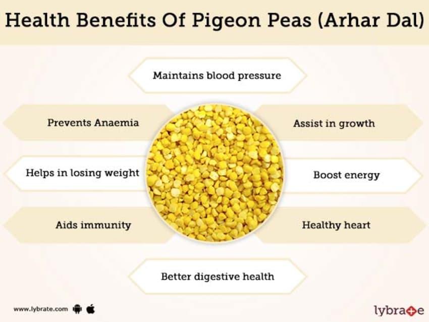 https://www.24mantra.com/wp-content/uploads/2020/05/health-benefits-of-pigeon-5ec914362f0f9.jpg