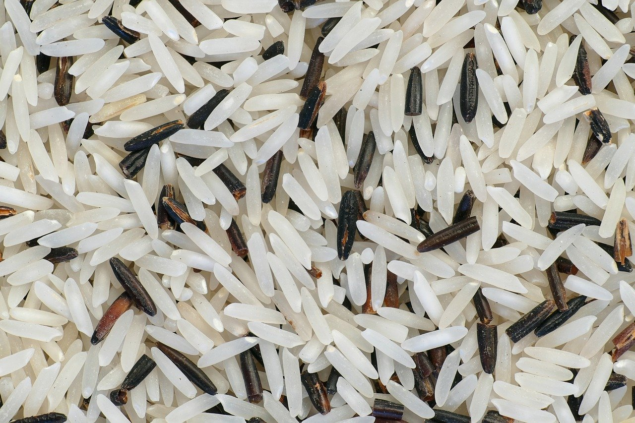 Basmati-Rice-101-Guide