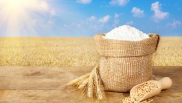 What is Whole Wheat Flour? Health and Nutritional Benefits of This Indian Staple