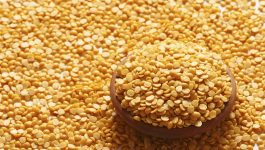 Can Toor Dal Increase Your Weight?