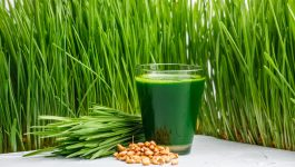How Can Wheatgrass Help With Weight Loss?