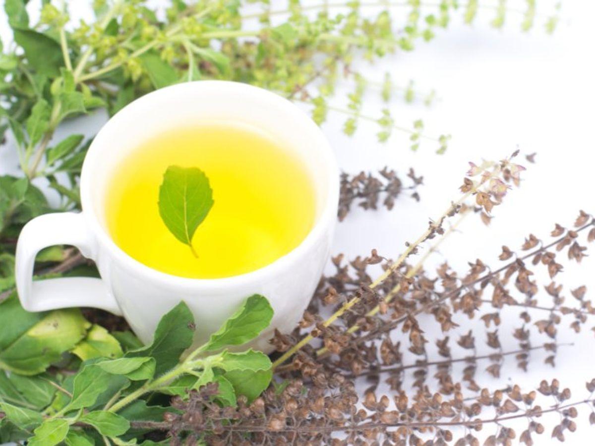 How to make tulsi tea