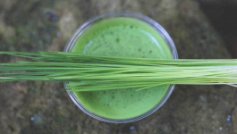 8 Essential Nutrition Benefits of Wheatgrass
