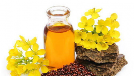 Benefits of cooking with mustard oil for cholesterol patients