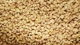 Fenugreek Benefits for Hair: Everything You Need to Know