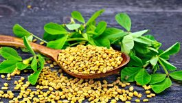 Health Benefits of Fenugreek for Diabetes