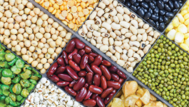 Foods to get the best plant protein