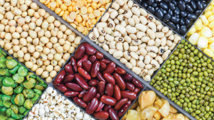 X foods to get the best plant protein