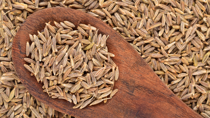 Cumin-Seeds-for-Diabetes:-A-Miracle-Spice-or-Hoax?