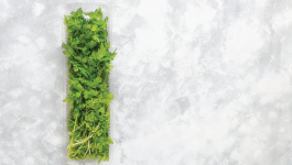 Medicinal Uses of Coriander Leaves, Seeds, and Extracts