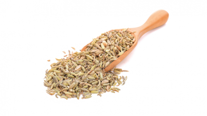 Medicinal Properties and Uses of Fennel