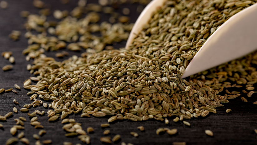 Fennel-Seeds:-Uses,-Benefits,-and-Side-Effects