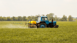 Natural, Organic Pesticides Allowed in Organic Farming