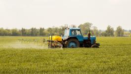 Natural, Organic Pesticides Allowed in Organic Farming