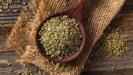 Can you really loose weight with fennel water? lets find out