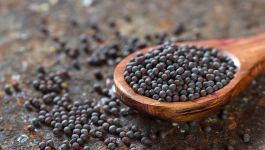Mustard Seeds Health Benefits: Why You Must Add it to Your Diet
