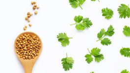 Coriander Seeds Nutrition Facts and Health Benefits