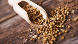 Can Coriander Seeds Help Weight Loss?