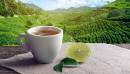 Let's Have a Look at How Organic Assam Tea Benefits You