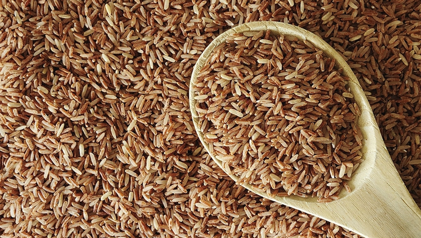 brown rice protein content