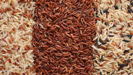 Brown Rice Types and Categories