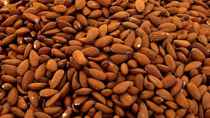 Wholesome Benefits of Organic Almonds For a Sharp Mind