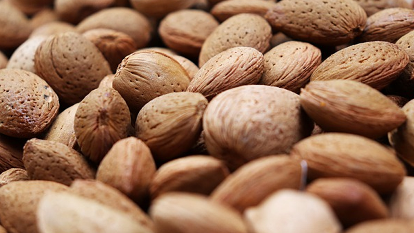 are almonds good for cholesterol