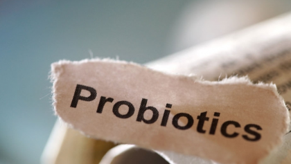 What Are Probiotics And Prebiotics? Understand Their Differences And Benefits