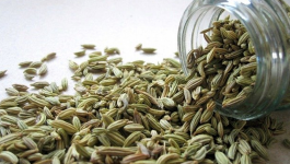 4 Interesting Nutritional Facts About Fennel Seeds