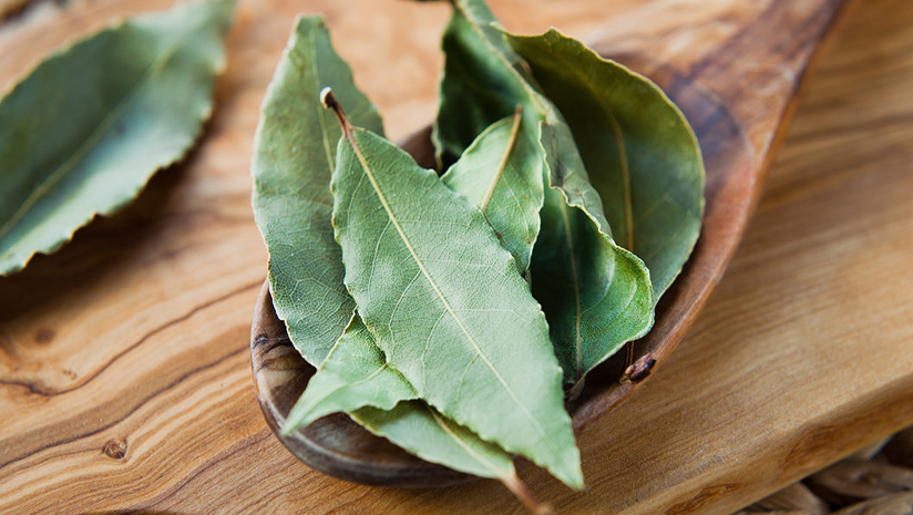 Bay-Leaf-For-Hair?-Does-It-Really-Work?