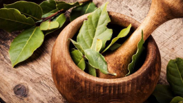 5 Medicinal Uses of Bay Leaves
