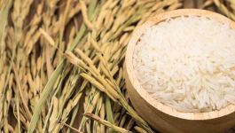 5 Interesting Nutritional Facts About Whole Grain Basmati Rice