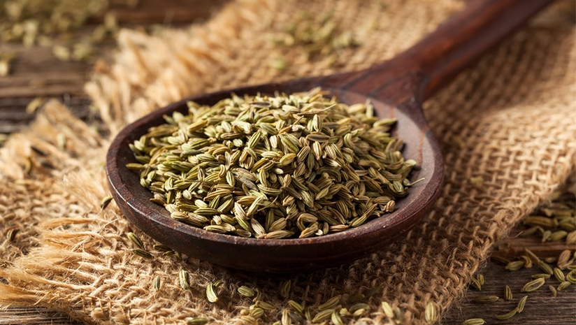 Here's-More-Reasons-to-Chew-on-The-Benefits-of-Fennel-Seeds