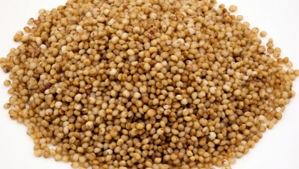 Easy Guide To Kodo Millet Recipe