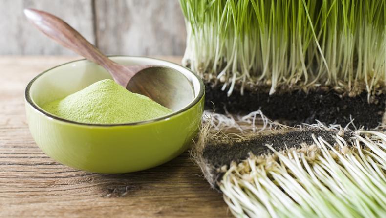 Optimum Organic Wheatgrass Powder Dosage For Best Results