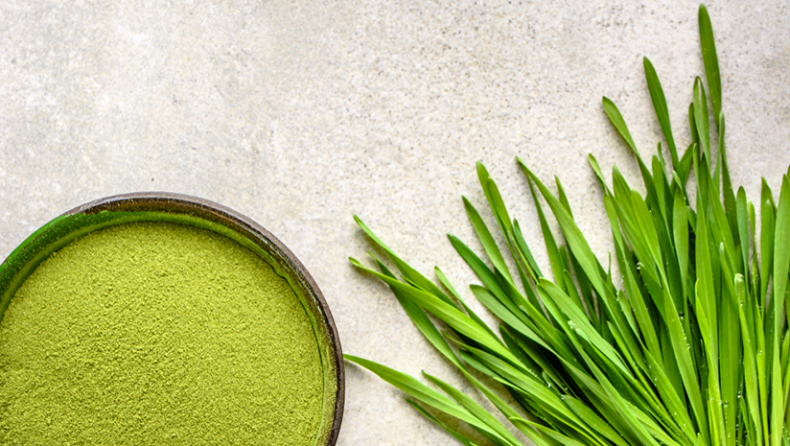 Potential Side Effects Of Wheat Grass Powder