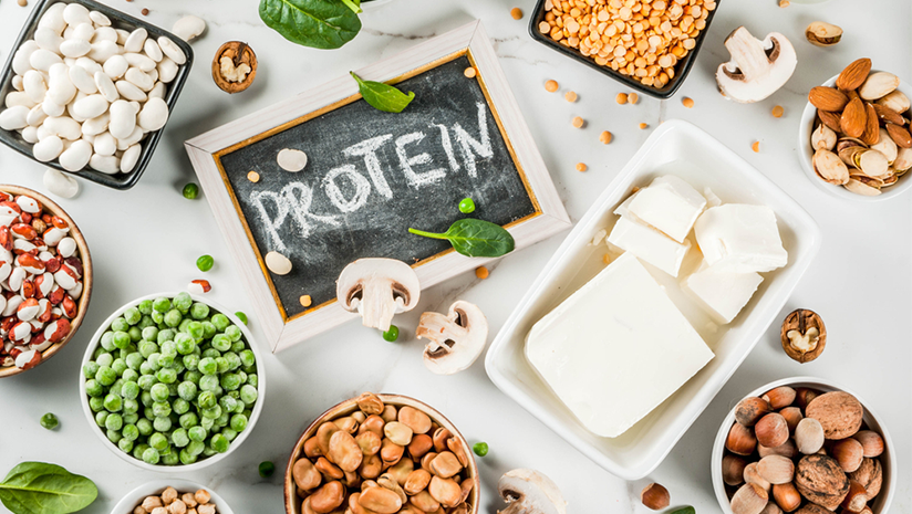 proteins for body